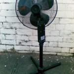 A dead fan