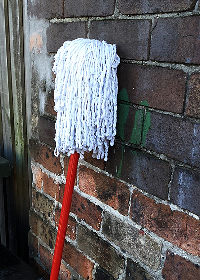 Another dead mop