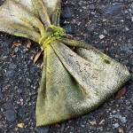 A dead bow tie