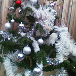 Christmas trees part 2
