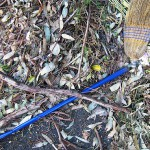 A dead broom