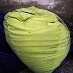Another dead bean bag