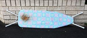 ironing-board-16